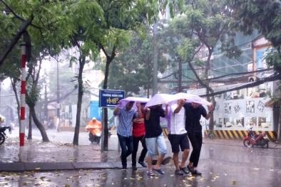 Cơn mưa giải nhiệt cho người dân Thủ đô trưa 6/6: Hà Nội đã giảm 5 độ C