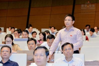 Tiền nợ xấu 600 nghìn tỷ có thể xây được 3 sân bay Long Thành