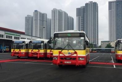 2 tuyến xe buýt mới 95, 96 của Hà Nội đi qua những điểm nào?