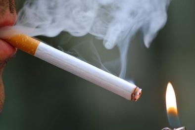Kinh hoàng 7000 chất độc hại trong điếu thuốc lá cướp đi 7 triệu người mỗi năm