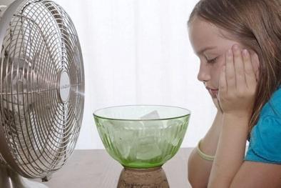 Mách bạn 'bí kíp' sử dụng quạt điện đúng chuẩn ngày nắng nóng