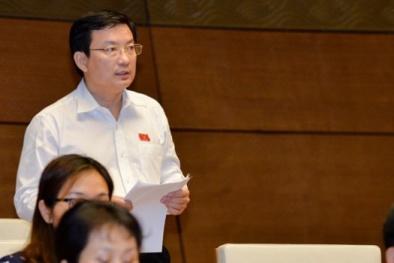 Đại biểu Quốc hội Phạm Trọng Nhân: 'Ngậm ngùi nhìn người Việt mua hàng ngoại'