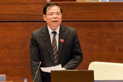 Bộ trưởng Nông nghiệp: 'Thừa thịt lợn không phải là lỗi của nông dân'