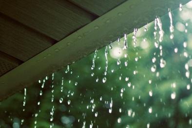 Nước mưa mang theo nhiều chất độc hại từ 'trên trời' rơi xuống