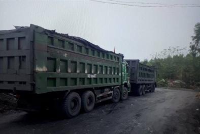 Quảng Ninh yêu cầu Chủ tịch Đông Triều báo cáo bức xúc khai thác than