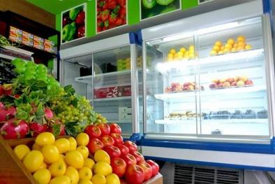 Những sai lầm tai hại biến tủ lạnh thành nguồn gây bệnh trong nhà