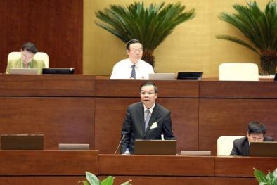 Hơn 93% Đại biểu Quốc hội thông qua dự thảo Luật Chuyển giao Công nghệ (sửa đổi)
