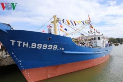 Ngư dân Huế đồng loạt rút hồ sơ đóng tàu vỏ thép