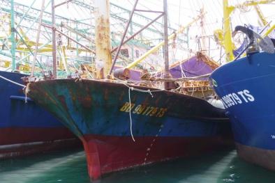 Vụ tàu vỏ thép hư hỏng: Khởi kiện công ty đóng tàu né trách nhiệm