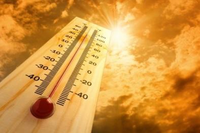 Con người sẽ phải đối mặt với nắng nóng 'chết người' nhiều hơn?