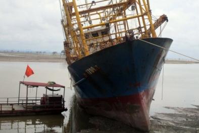 Sau Bình Định, ngư dân Thanh Hóa cũng 'khốn khổ' vì tàu vỏ thép hư hỏng hàng loạt