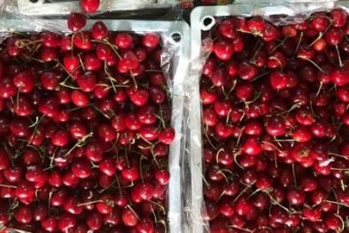 Cherry Trung Quốc giá rẻ chiếm lĩnh chợ online