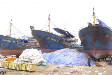 Vụ tàu vỏ thép hư hỏng: Thêm nhiều diễn biến bất ngờ