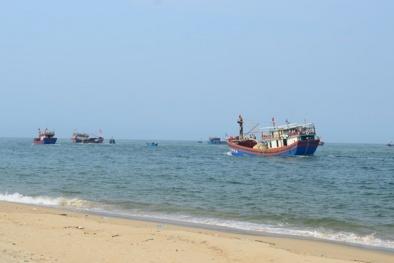 Công bố hiện trạng môi trường biển 4 tỉnh miền Trung: Ổn định, có thể nuôi trồng thủy sản