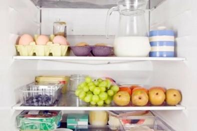 Muốn tiết kiệm điện hãy để 1 bát nước trong tủ lạnh và chờ đợi điều kì diệu sẽ xảy ra