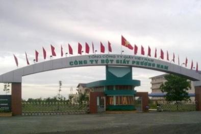 Rao bán nhà máy bột giấy Phương Nam đặt tại tỉnh Long An