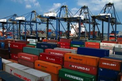 Hơn 200 container bỗng dưng 'mất tích': Xử lý nghiêm công chức vi phạm