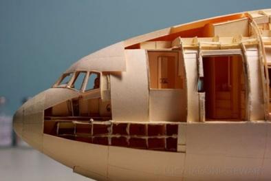Tự mình 'chế tạo máy bay' độc nhất vô nhị trên thế giới