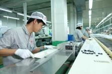 Rạng Đông phát triển chuyên nghiệp nhờ hệ thống quản lý ISO 9001:2015