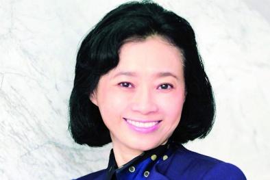 Bà Đặng Thị Hoàng Yến thay em trai làm Tổng giám đốc Công ty Tân Tạo