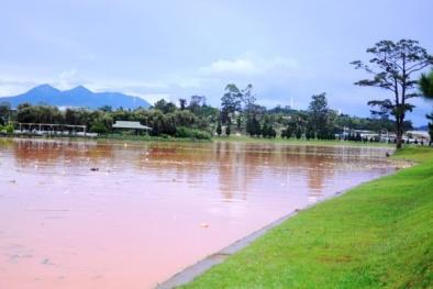 Một sông ở Đà Nẵng, một hồ ở Đà Lạt đồng loạt đổi màu: Nguyên nhân gây sốc