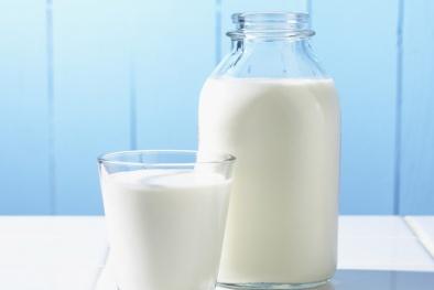 Sẽ không còn 'sữa tiệt trùng' trên thị trường từ năm 2018