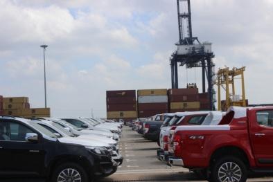 Có thể bị áp thuế tiêu thụ đặc biệt lên gấp đôi: Ô tô bán tải đắt thêm cả trăm triệu