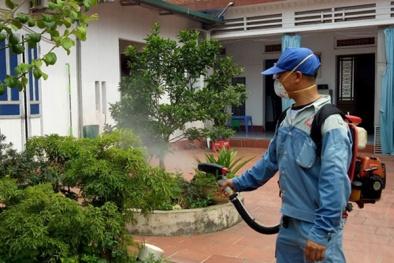 Phun thuốc không đúng, muỗi gây sốt xuất huyết có thể 'khỏe lên'