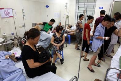 Toàn cảnh dịch sốt xuất huyết tại Hà Nội