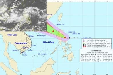 Cơn bão số 6 vừa tan, bão Pakhar lại chuẩn bị tiến vào biển Đông
