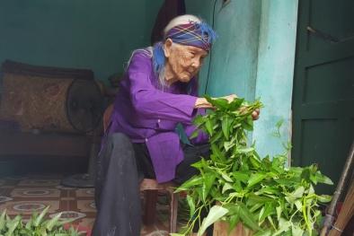 Người sống thọ nhất tỉnh Quảng Ninh, 'bí quyết' chỉ ăn cơm khô không chan nước