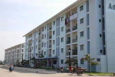 Nhà ở tái định cư sẽ được quản lý chất lượng và bảo trì thế nào?