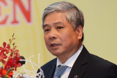 Con đường sự nghiệp của nguyên Phó Thống đốc NHNN vừa bị khởi tố