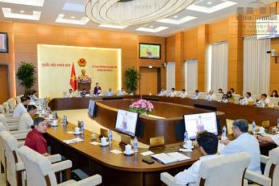 Thường vụ Quốc hội sẽ thảo luận về Luật phòng chống tham nhũng (sửa đổi)