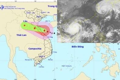 Cập nhật tin bão số 10, diễn biến mới nhất của cơn bão số 10