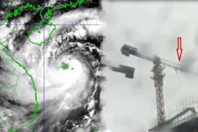 Nhà cao tầng, cẩu tháp tiềm ẩn nguy hiểm với gió bão giật mạnh