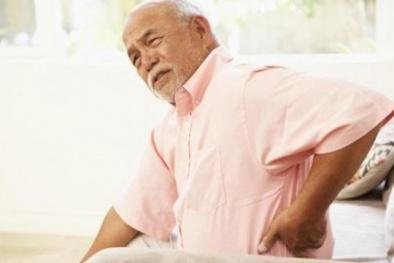 Protein Cbf-beta –  Phát hiện mới ngăn chặn loãng xương ở người cao tuổi
