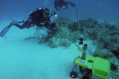 Kiểm soát, xử lý vi phạm liên quan đến hoạt động nghiên cứu khoa học trong vùng biển Việt Nam