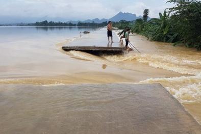 Tràn đê Bùi 2 và vỡ đê Tế Nông: Hơn 600 hộ dân ở Hà Nội và Thanh Hóa chìm trong biển nước