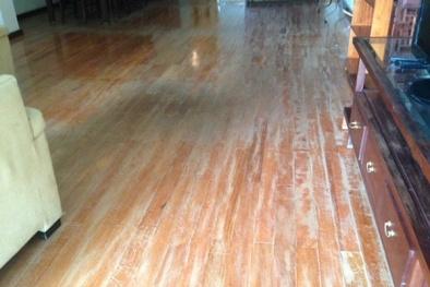 Cảnh báo chất độc trong đồ nội thất gỗ công nghiệp kém chất lượng