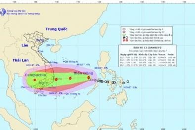 Bão số 12 áp sát đất liền, nhìn lại những trận bão lịch sử ở Nam Bộ