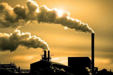 Độc chất trong môi trường có thể gây hàng loạt bệnh ung thư là gì?