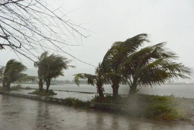 Dự báo thời tiết ngày 4/11: Bão số 12 đổ bộ nước ta