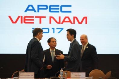 APEC 2017: Khai mạc sự kiện mở đầu Tuần lễ Cấp cao APEC