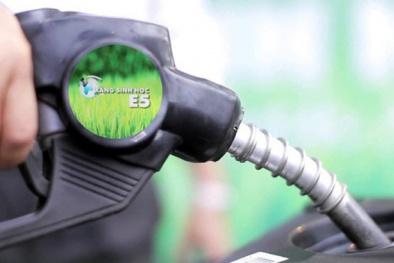 E5 thay thế RON 92: Giá xăng E5 thấp hơn xăng A95 đến 1.045 đồng/lít