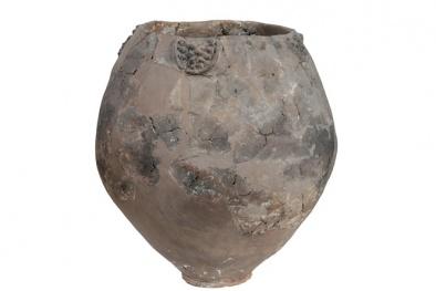 Phát hiện thùng rượu nho 8.000 năm tuổi