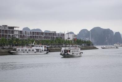 Bị tố 'chặt chém' du khách: Tàu du lịch trên Vịnh Hạ Long bị đình chỉ hoạt động
