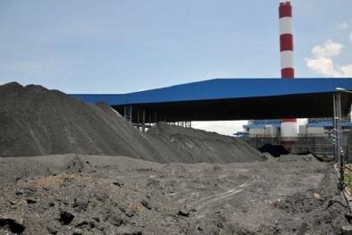 Formosa Hà Tĩnh được phép bán tro bay phát sinh từ nhà máy nhiệt điện