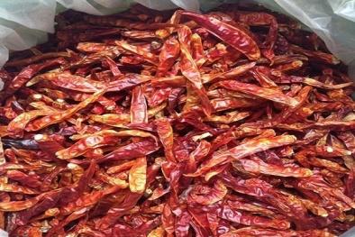 Phát hiện ớt khô nhiễm độc chất gây ung thư tại chợ