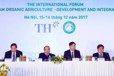 Thủ tướng: Sản xuất hữu cơ để đảm bảo nền nông nghiệp an toàn, hiệu quả